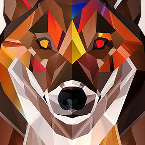 Autumnal Wolf